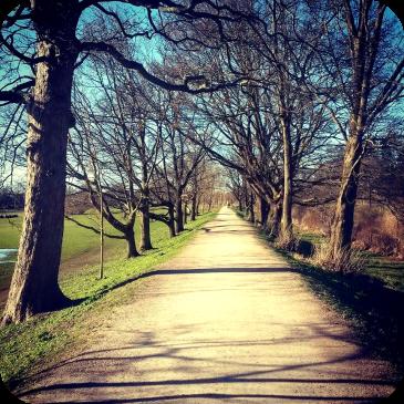 Espacios verdes en el medio de la ciudad - Copenhague